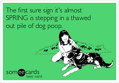 The first sure sign it's almost SPRING is stepping in a thawed out pile of dog poop.