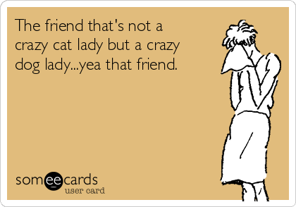 The friend that's not a crazy cat lady but a crazy dog lady...yea that friend.