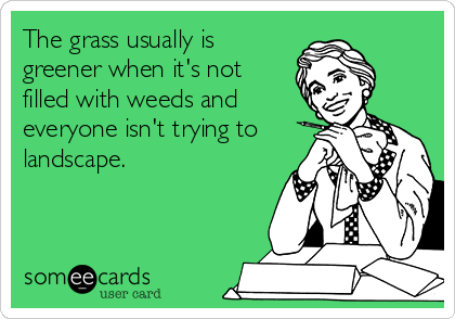 The grass usually is greener when it's not filled with weeds and everyone isn't trying to landscape.