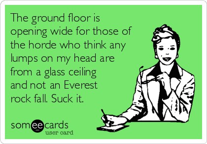 The ground floor is opening wide for those of the horde who think any lumps on my head are from a glass ceiling and not an Everest rock fall. Suck it.