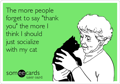 """The more people forget to say """"thank you"""" the more I think I should just socialize with my cat"""