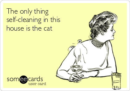 The only thing self-cleaning in this house is the cat