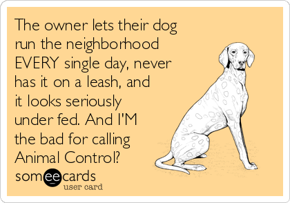 The owner lets their dog run the neighborhood EVERY single day, never has it on a leash, and it looks seriously under fed. And I'M the bad for calling Animal Control?