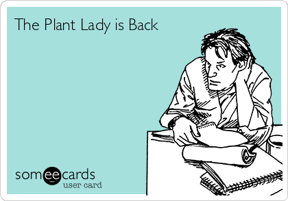 The Plant Lady is Back