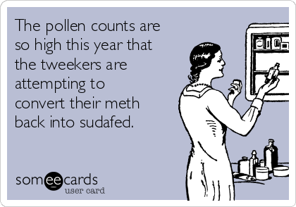 The pollen counts are so high this year that the tweekers are attempting to convert their meth back into sudafed.