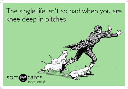 The single life isn't so bad when you are knee deep in bitches.