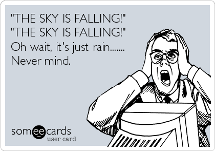 """""""THE SKY IS FALLING!"""" """"THE SKY IS FALLING!"""" Oh wait, it's just rain....... Never mind."""