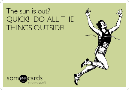 The sun is out?  QUICK!  DO ALL THE THINGS OUTSIDE!