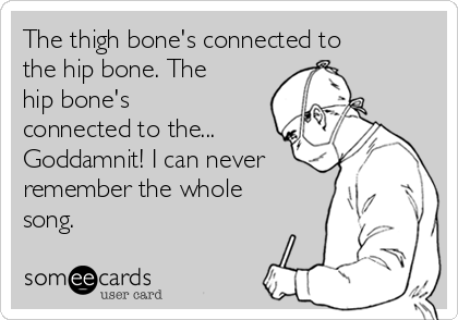 The thigh bone's connected to the hip bone. The hip bone's connected to the... Goddamnit! I can never remember the whole song.