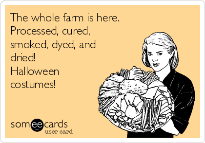 The whole farm is here. Processed, cured, smoked, dyed, and dried! Halloween costumes!