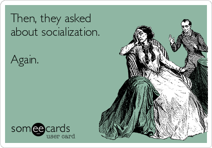 Then, they asked about socialization.  Again.