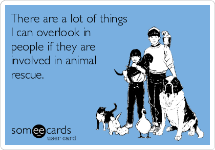 There are a lot of things I can overlook in people if they are involved in animal rescue.