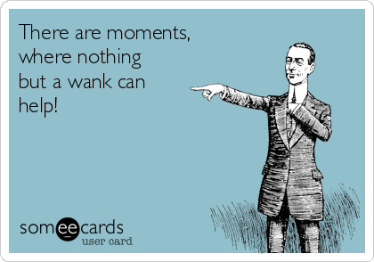 There are moments,  where nothing but a wank can help!