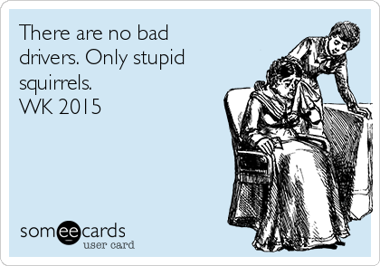 There are no bad drivers. Only stupid squirrels. WK 2015