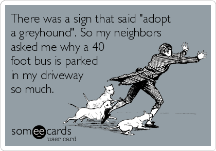 "There was a sign that said ""adopt a greyhound"". So my neighbors asked me why a 40 foot bus is parked in my driveway so much."