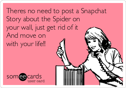 Theres no need to post a Snapchat Story about the Spider on your wall, just get rid of it And move on with your life!!