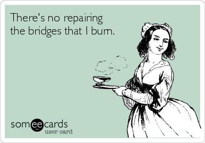 There's no repairing the bridges that I burn.
