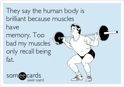 They say the human body is brilliant because muscles have memory. Too bad my muscles only recall being fat.