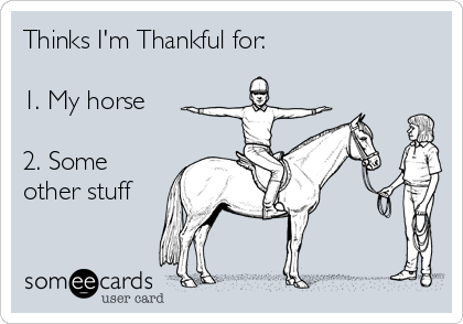 Thinks I'm Thankful for:  1. My horse  2. Some other stuff