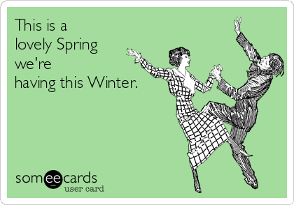 This is a lovely Spring we're having this Winter.