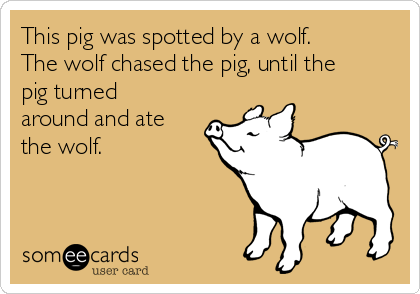 This pig was spotted by a wolf. The wolf chased the pig, until the pig turned around and ate the wolf.
