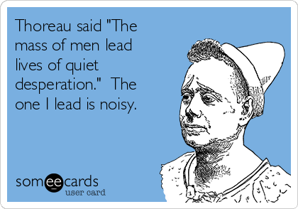 """Thoreau said """"The mass of men lead lives of quiet desperation.""""  The one I lead is noisy."""
