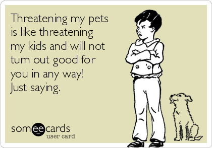 Threatening my pets is like threatening my kids and will not turn out good for you in any way!  Just saying.