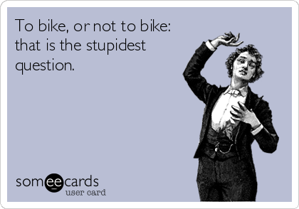 To bike, or not to bike: that is the stupidest question.