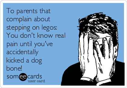 To parents that complain about stepping on legos: You don't know real pain until you've accidentally kicked a dog bone!