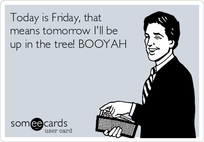 Today is Friday, that means tomorrow I'll be up in the tree! BOOYAH