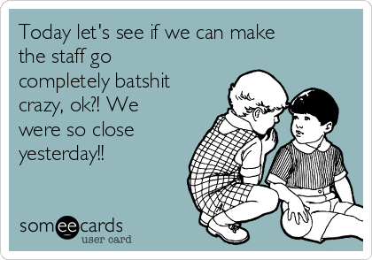 Today let's see if we can make the staff go completely batshit crazy, ok?! We were so close yesterday!!