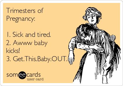 Trimesters of Pregnancy:  1. Sick and tired. 2. Awww baby kicks! 3. Get.This.Baby.OUT.