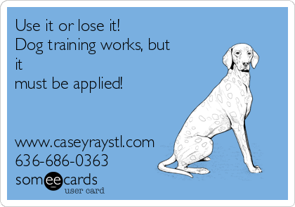 Use it or lose it! Dog training works, but it  must be applied!   www.caseyraystl.com 636-686-0363
