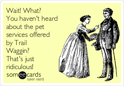 Wait! What? You haven't heard about the pet services offered by Trail Waggin? That's just ridiculous!