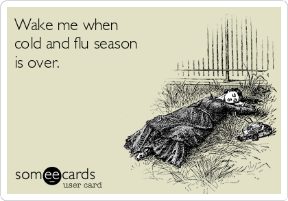 Image result for flu someecards