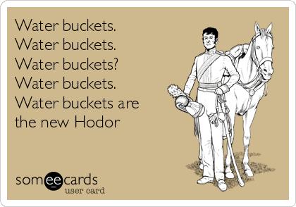 Water buckets.  Water buckets.  Water buckets?  Water buckets.  Water buckets are the new Hodor