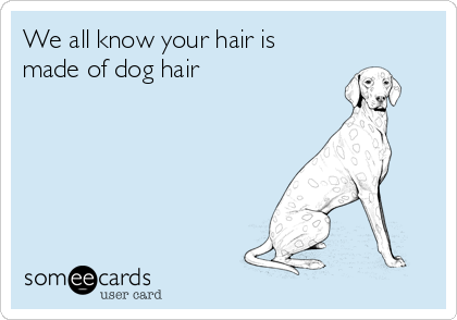 We all know your hair is made of dog hair
