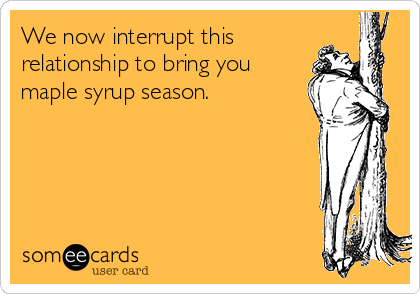 We now interrupt this relationship to bring you maple syrup season.
