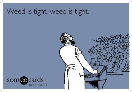 Weed is tight, weed is tight.