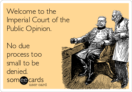 Welcome to the  Imperial Court of the Public Opinion.    No due process too small to be denied.