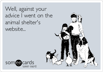 Well, against your advice I went on the animal shelter's  website...