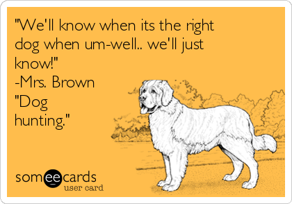 """""""We'll know when its the right dog when um-well.. we'll just know!"""" -Mrs. Brown """"Dog hunting."""""""