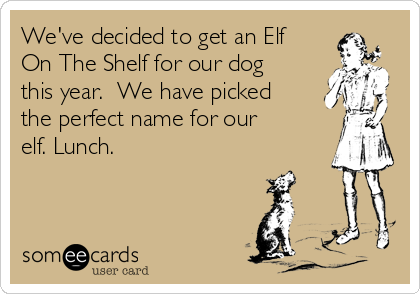 We've decided to get an Elf On The Shelf for our dog this year.  We have picked the perfect name for our elf. Lunch.
