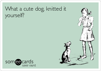 What a cute dog, knitted it yourself?