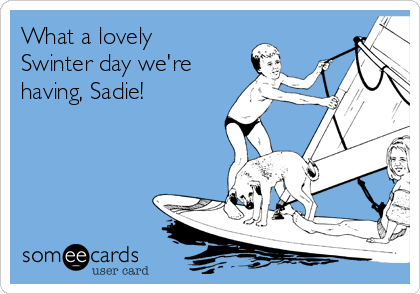 What a lovely Swinter day we're having, Sadie!