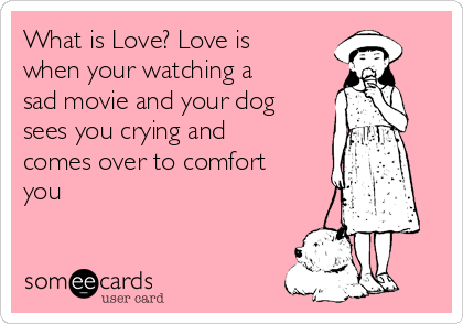 What is Love? Love is when your watching a sad movie and your dog sees you crying and comes over to comfort you