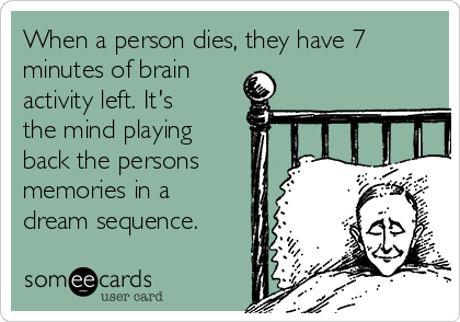 When a person dies, they have 7 minutes of brain activity left. It's the mind playing back the persons memories in a dream sequence.