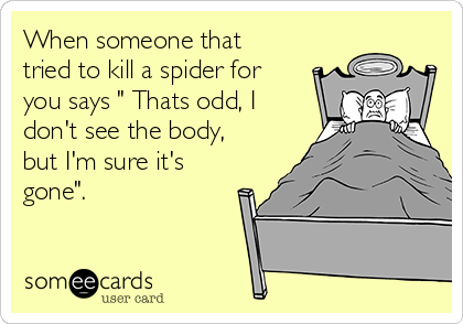 "When someone that tried to kill a spider for you says "" Thats odd, I don't see the body, but I'm sure it's gone""."