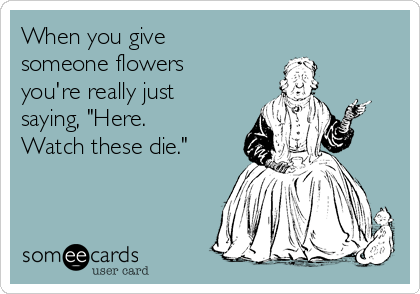 """When you give someone flowers you're really just saying, """"Here. Watch these die."""""""