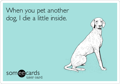 When you pet another dog, I die a little inside.